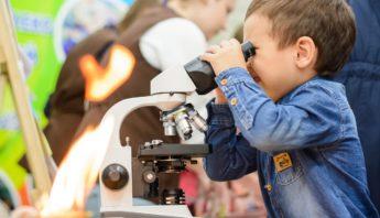 ii фестиваль науки включай экологику (14)